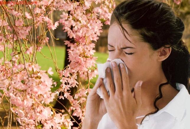 Cách điều trị viêm mũi dị ứng bằng thuốc đông y