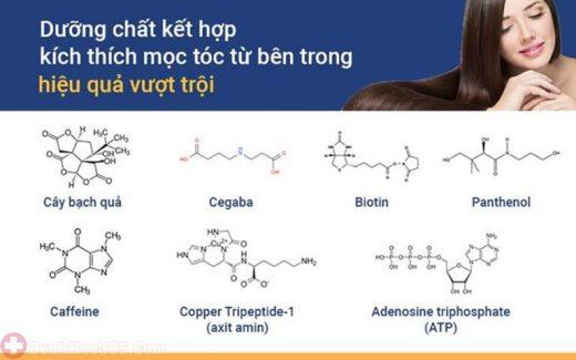 Các dưỡng chất đưa vào cho hiệu quả điều trị vượt trội